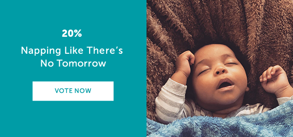 Napping Like There's No Tomorrow? VOTE NOW >>