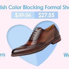 Stylish Color Blocking Formal Shoes