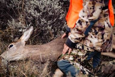 Dang Near Perfect Hunting Pants: Sitka Gear Timberline Pant Review