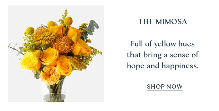 The Mimosa