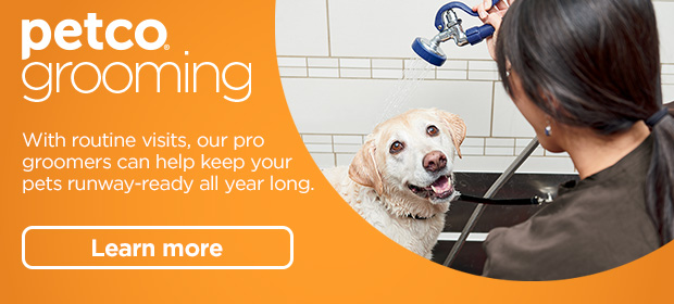 New year, new look - Petco Email Archive
