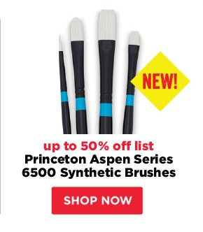 *NEW Set of 4* Princeton Aspen Series 6500 Synthetic Brushes - up to 50% off list