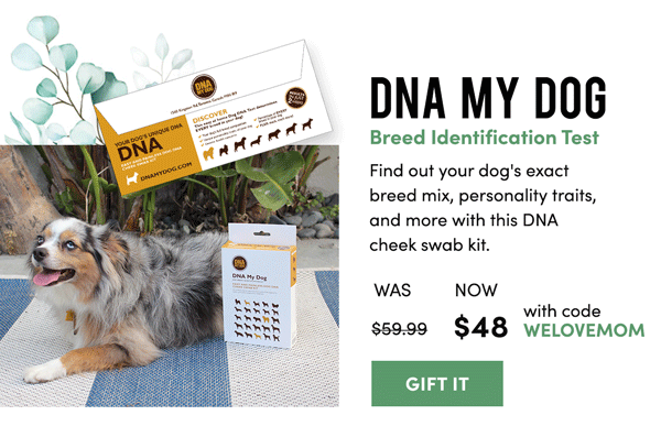 DNA My Dog Test Kit | Gift It