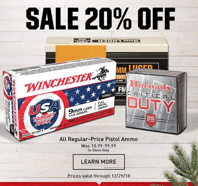 6c8e91ed9764 2 Days Left! 20% Off All Regular-Price Pistol Ammo - DICK S Sporting ...