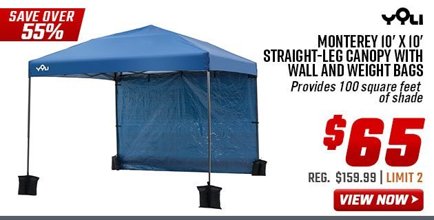 $65 Yoli 10'x10' Canopy with Wall and Weight Bags + Other 1 Day