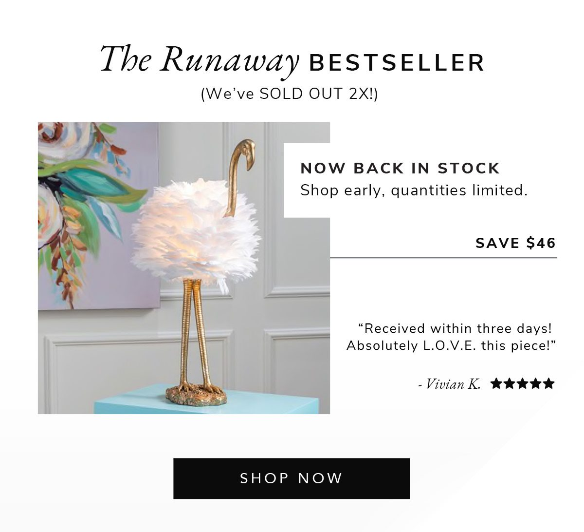 The Runaway Bestseller (SOLD OUT 2x) | SHOP NOW