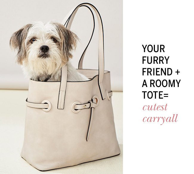Your Furry Friends + A Roomy Tote = Cutest Carryall