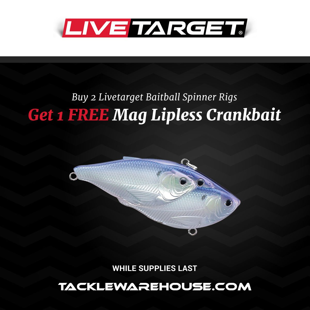 More New Promotions at Tackle Warehouse - Tackle Warehouse