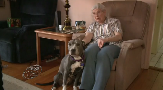 Nuns Adopt Hopeless 9-Year-Old Unwanted Pit Bull