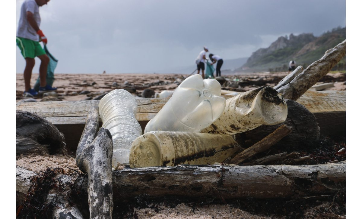 Take action | #2MinuteBeachClean