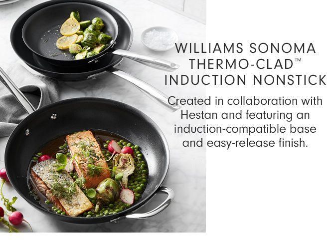 WILLIAMS SONOMA THERMO-CLAD™ INDUCTION NONSTICK