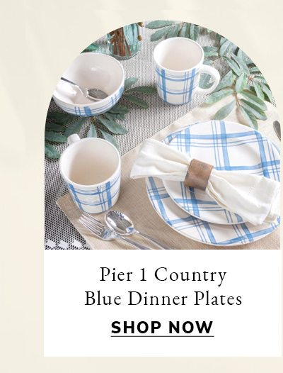 Pier 1 Country Blue Plaid Dinner Plates, Set of 4 | SHOP NOW