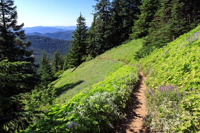 Explore Women's Pacific Crest Trail Backpacking