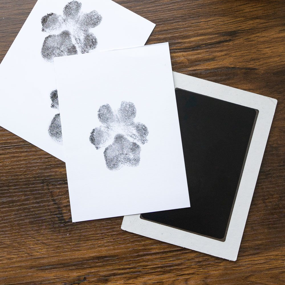 """You Leave Paw Prints on My Heart – """"No Mess"""" Ink-less Paw Print Keepsakes"""