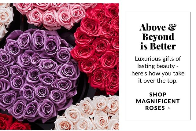 Beyond is Better - Shop Magnificent Roses