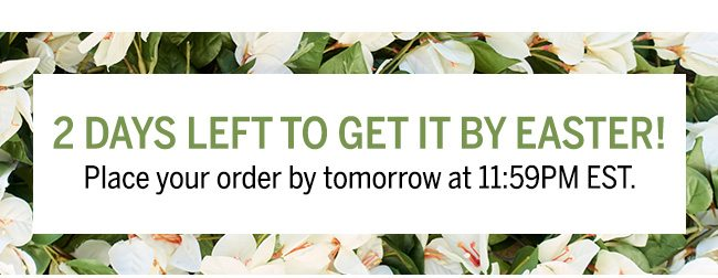 2 DAYS LEFT TO GET IT BY EASTER! Place your order by tomorrow at 11:59 PM EST.