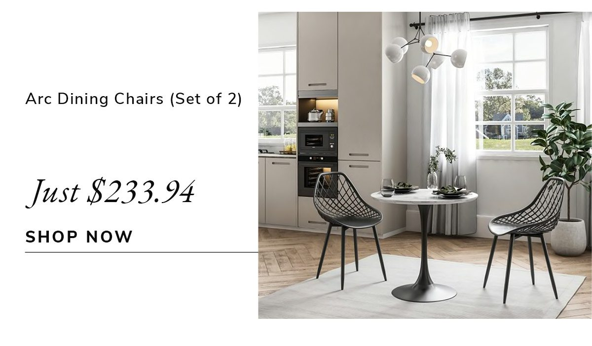 Arc Set of 2 Dining Chairs   SHOP NOW