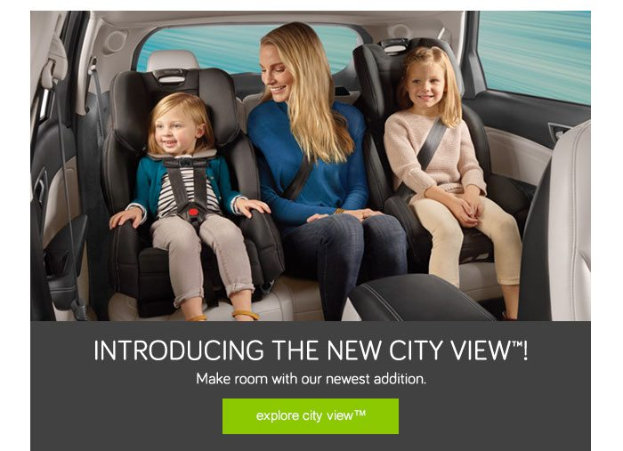 The City ViewTM Space Saving All In One Car Seat
