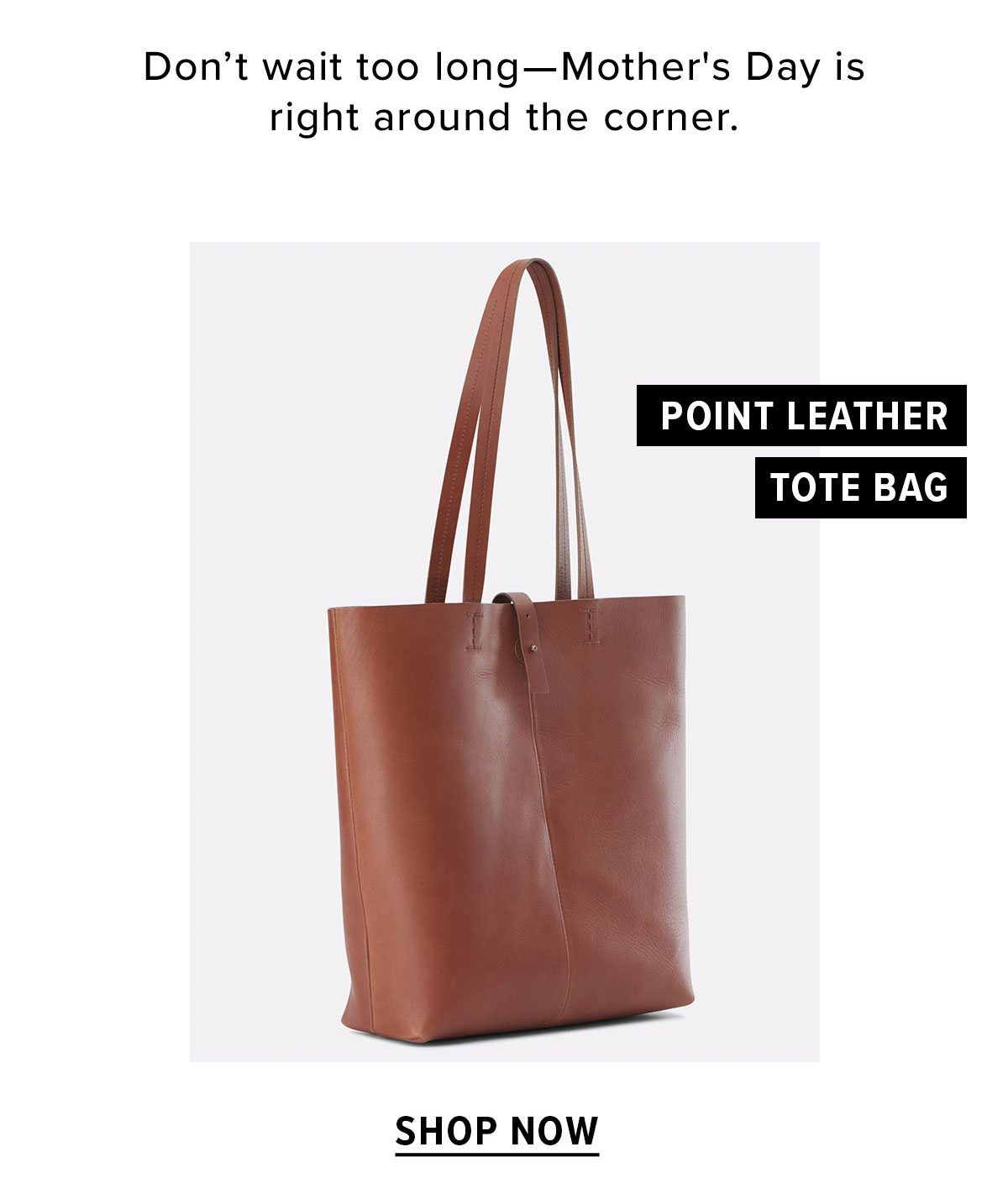 Point Leather Tote Bag
