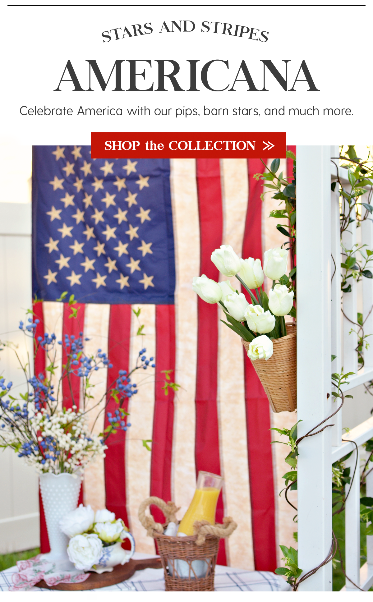 Stars and Stripes Americana Celebrate America with our pips, barns stars, and much more. Shop the Collection