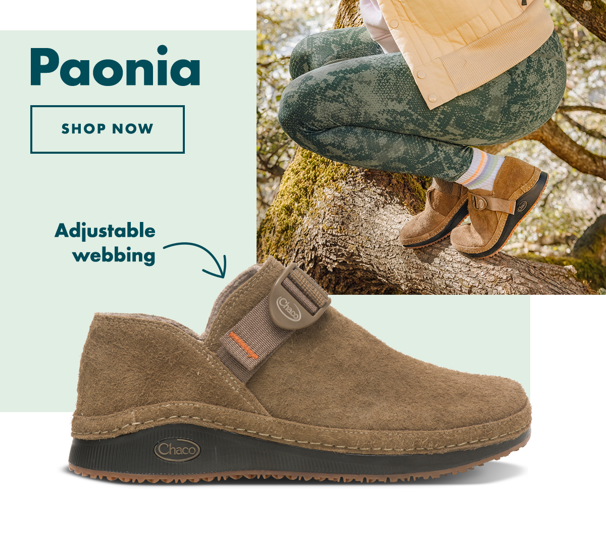 Paonia - Shop Now
