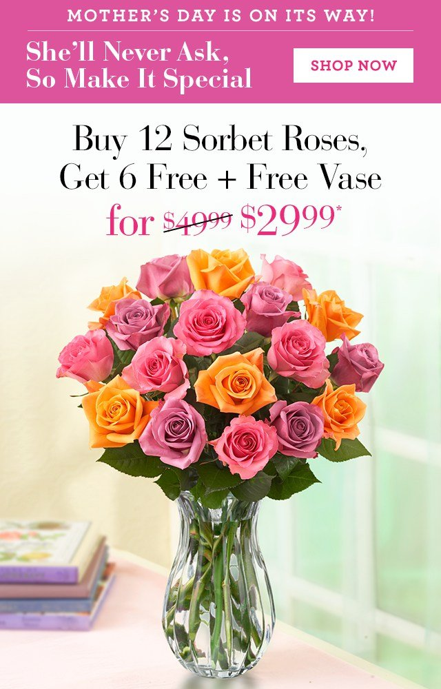 Make All The Moms in Your Life Feel Special Buy 12 Red Roses, Get 12