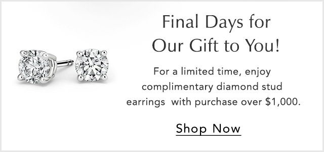 Final Days for Our Gift to You