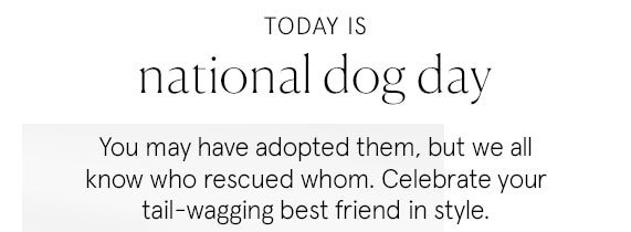 Today is National Dog Day!