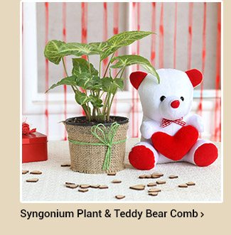 syngonium-plant-red-heart