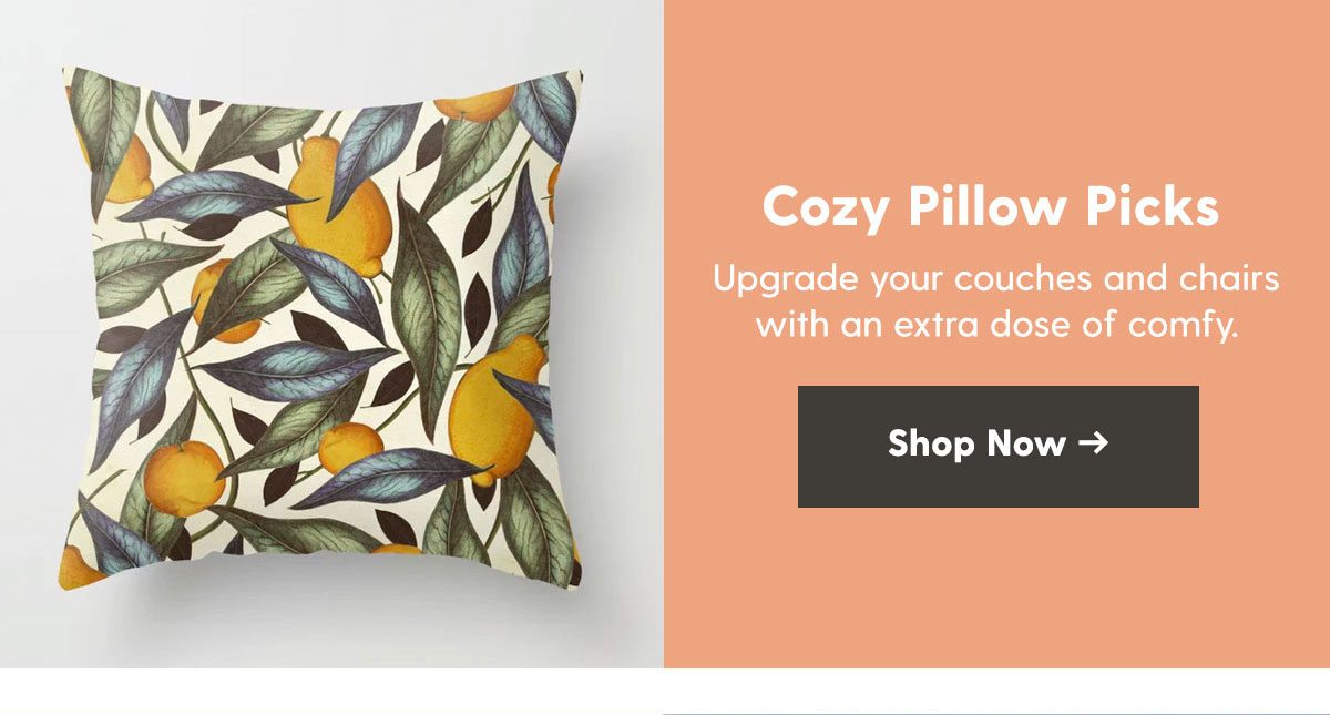 Cozy Pillow Picks