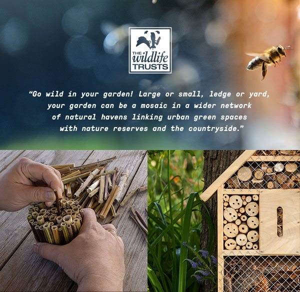"""""""Go wild in your garden! Large or small, ledge or yard, your garden can be a mosaic in a wider network of natural havens linking urban green spaces with nature reserves and the countryside"""