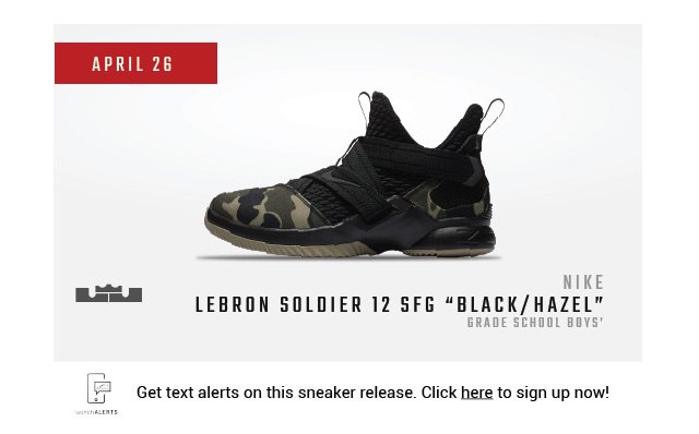 15f93efda12d Get text alerts on the grade school boys  Lebron Soldier 12 SFG