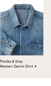Paisely & Gray Shirt>