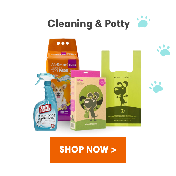 Shop Cleaning & Potty