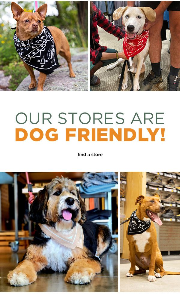 Our Stores Are Dog Friendly! - Click to Find a Store