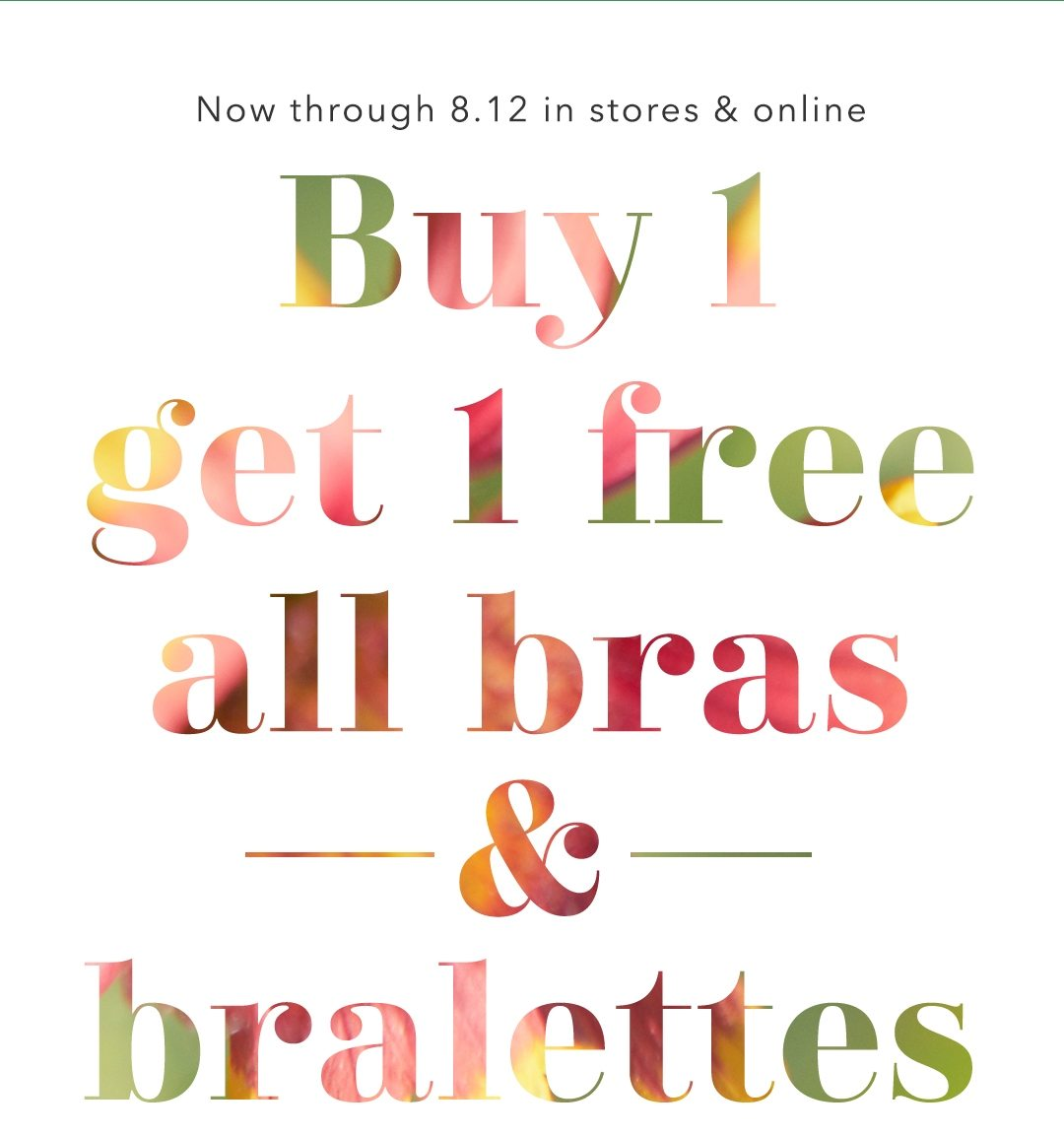 You Deserve A New Amazing Bra This Sale Aerie Email Archive