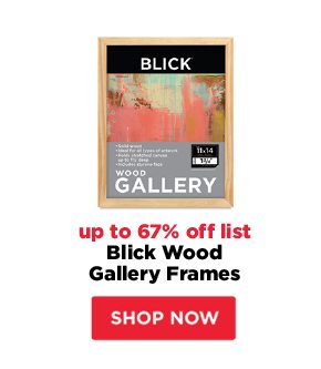 Blick Wood Gallery Frames - up to 67% off list