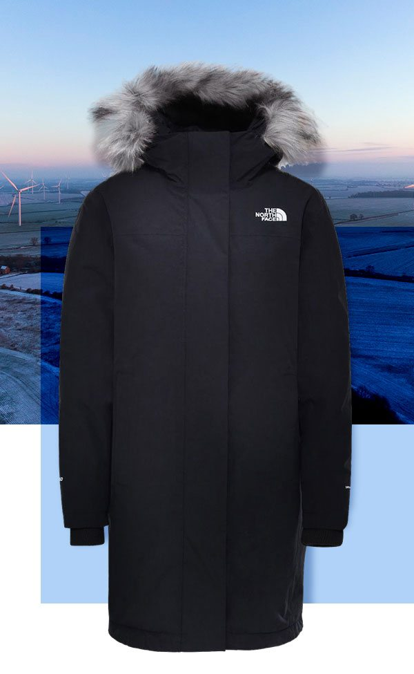 The North Face women's artic parka