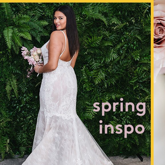 d7eb769770 Last day. 10% off bridal + 50% off maids - David's Bridal Email Archive