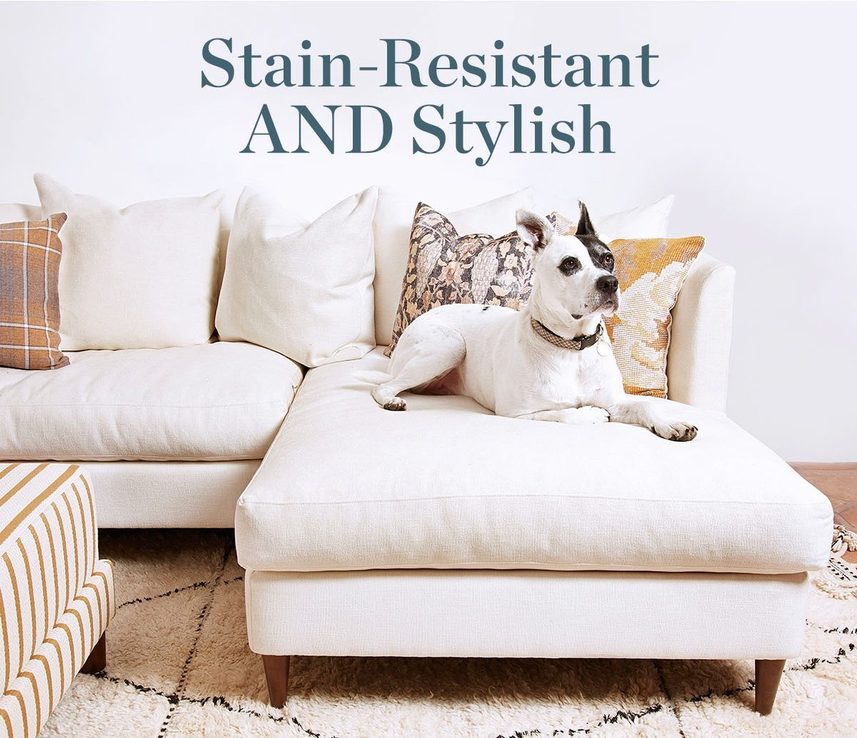 Stain resistant and stylish