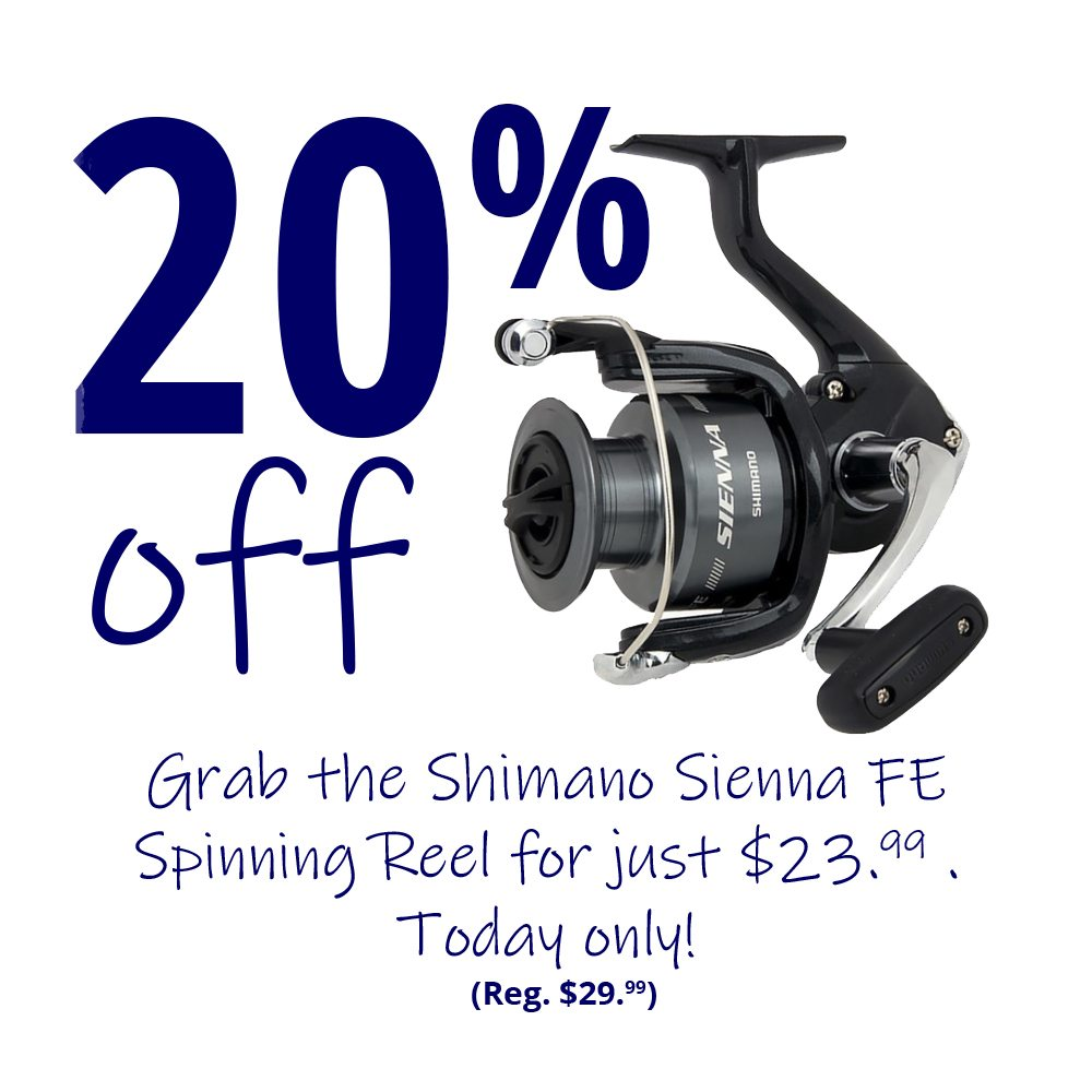 Save 20% on the Shimano Sienna FE Spinning Reel