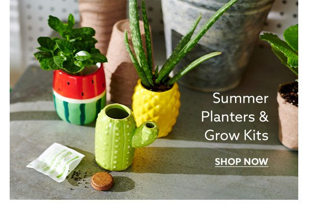 Summer Planters & Grow Kits