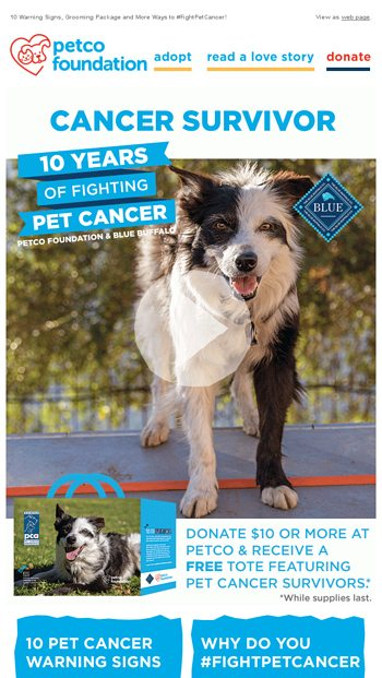 Hurry! These deals won't be around long  - Petco Email Archive