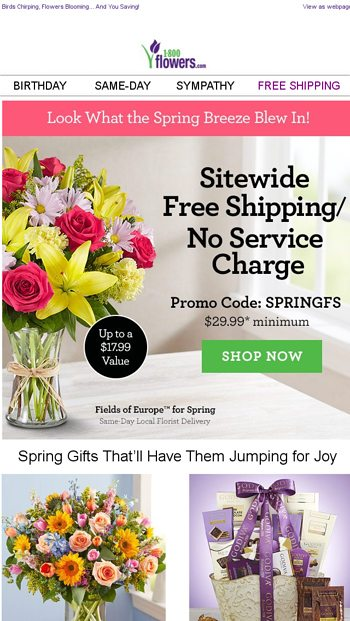 Enjoy Same Day Flowers Free Delivery Vaca
