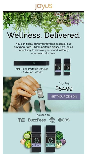 Meet the All-Natural Mood Booster We All Need - Joyus Email